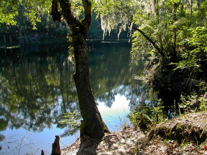 River sink at O'Leno State Park