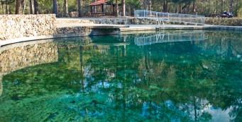 Ponce DeLeon Springs