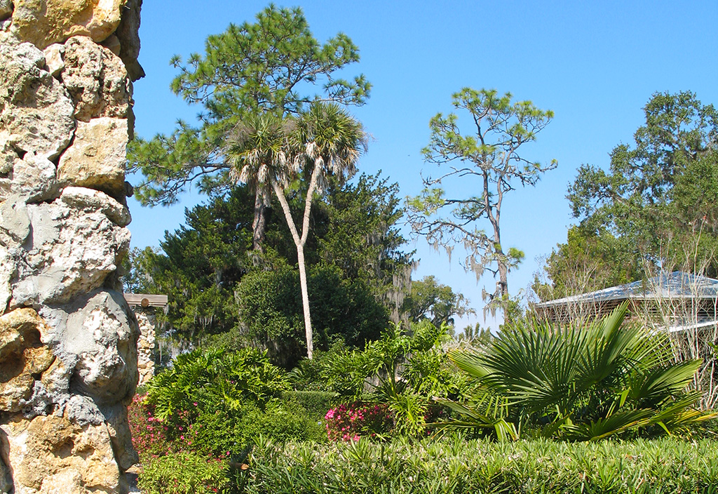 Ravine gardens state park florida hikes for Ravine gardens state park in palatka fl