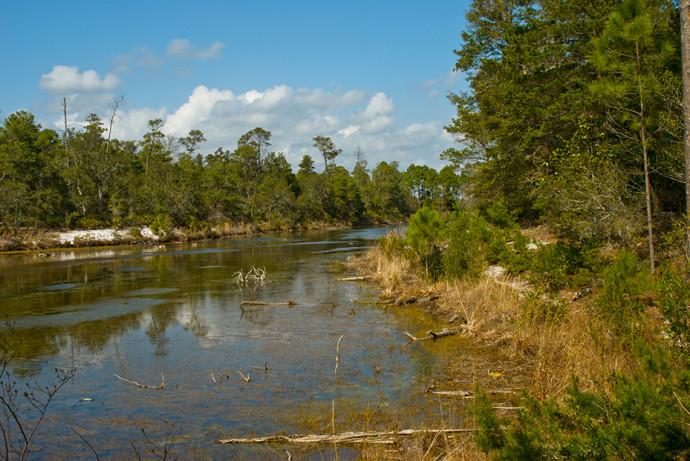 Rocky Bayou State Park