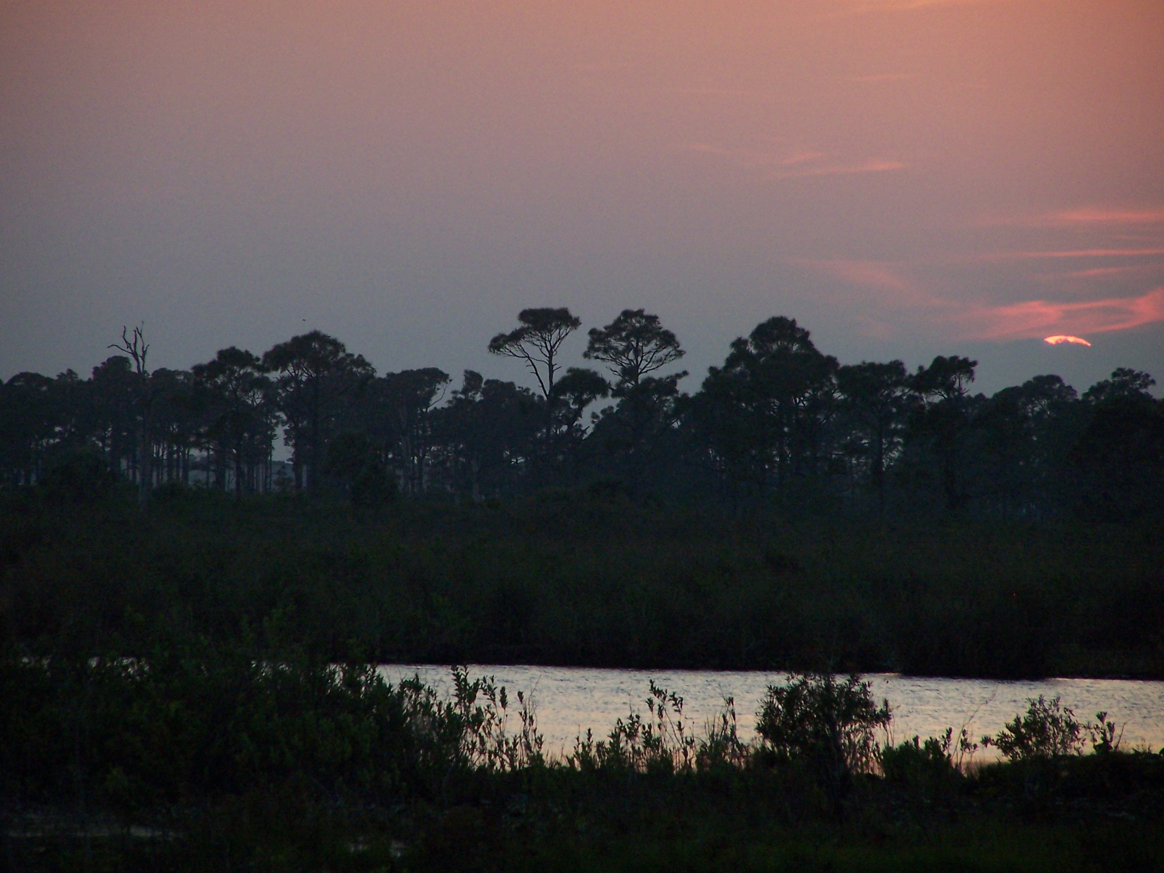 Sunset on the Savannas (Lori Burris)
