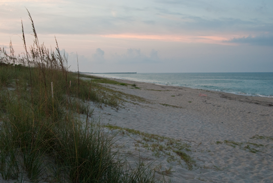 Sebastian inlet state park florida hikes for Indian river inlet fishing tips