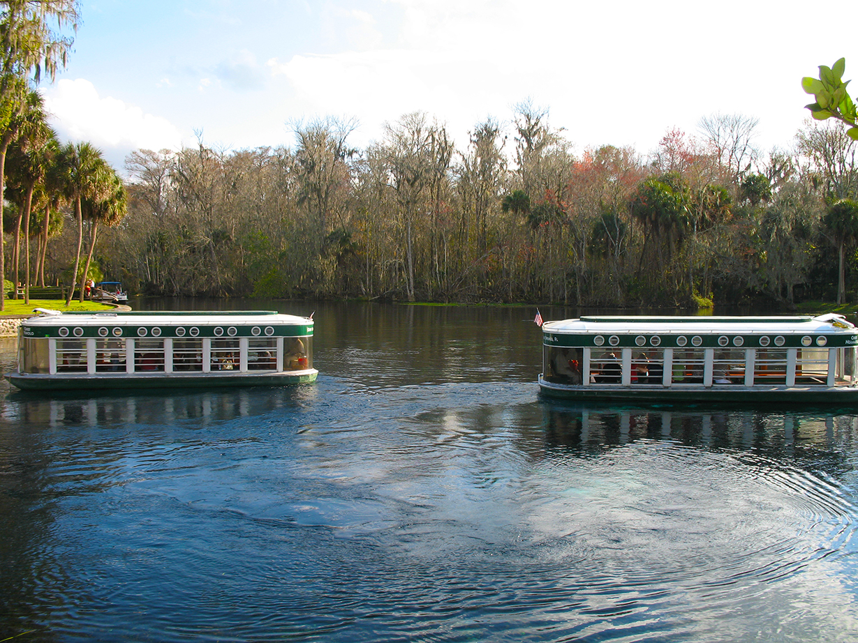 Glass-bottomed boats at Silver Springs