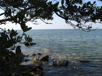 Terra Ceia Preserve State Park