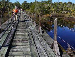 Florida Trail Hikes book