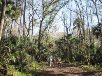 Oak Creek Equestrian Area