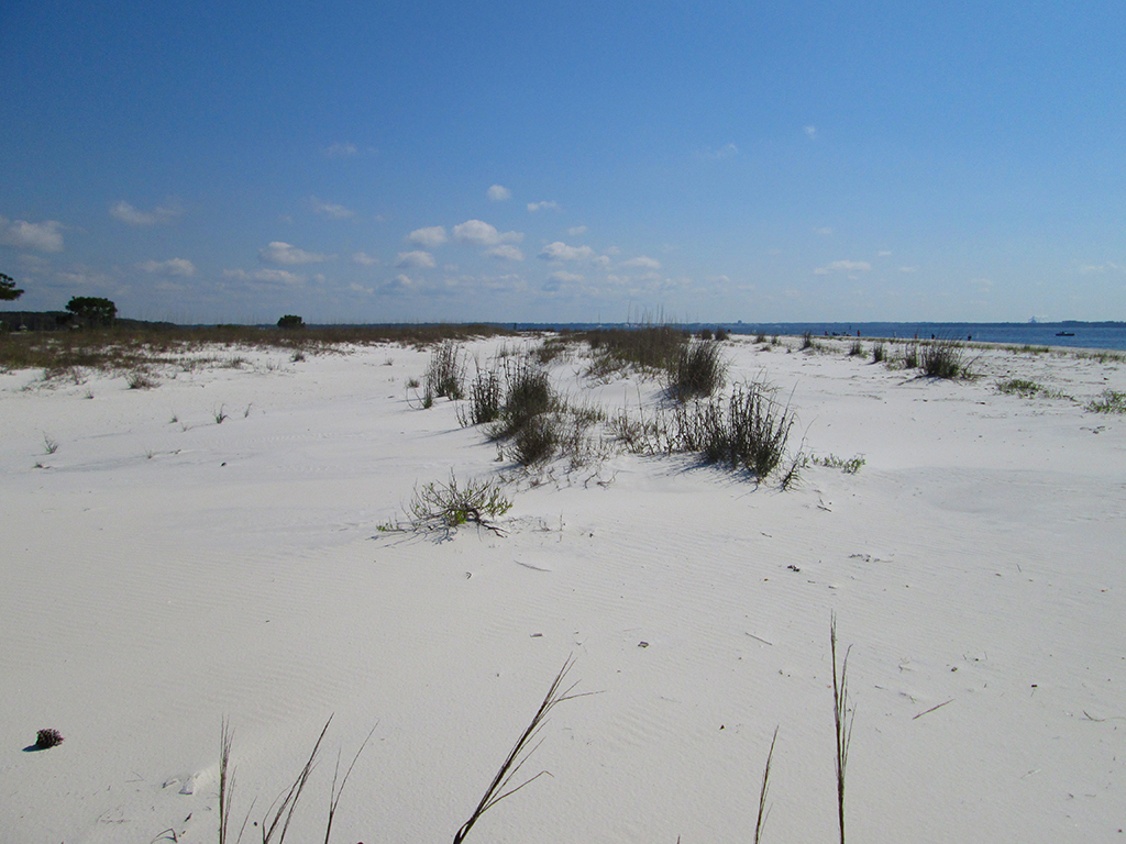Sandy Point, St. Andrews State Park