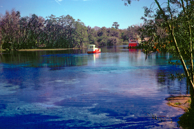 Rainbow River, March 1969 (Linda Friend)