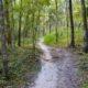 Santos Trails
