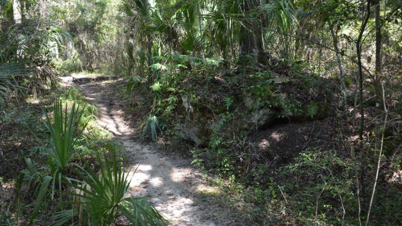Santos Sinkhole Trail
