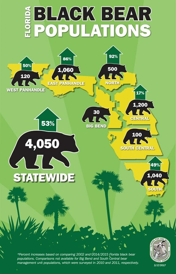 bear population in Florida (FWC)