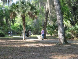 Hiking at Princess Place Preserve