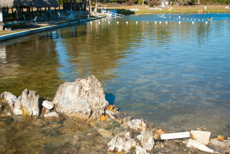 Clear water at Warm Mineral Springs