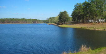 Blackwater River State Forest