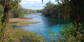 Rainbow River in Dunnellon