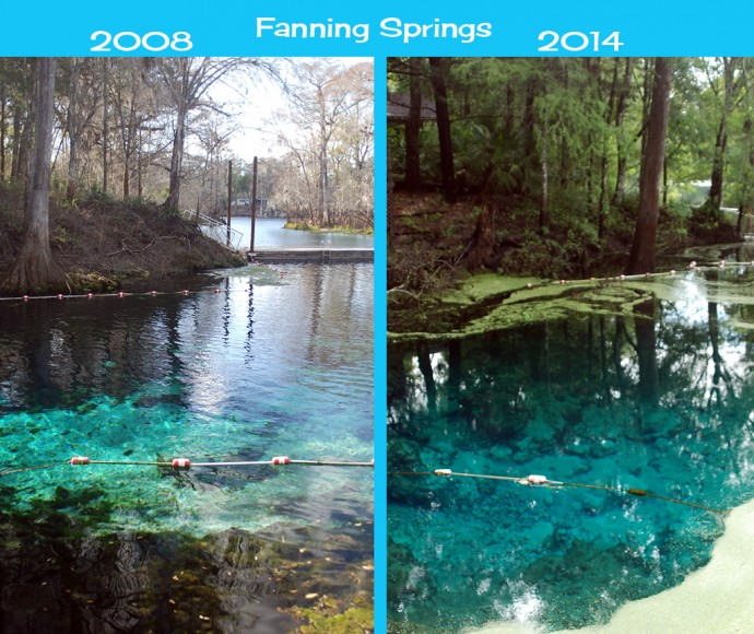 Changes in Fanning Springs