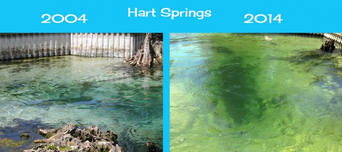 Closeup of changes to Hart Springs