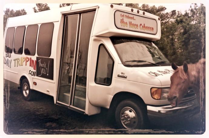 Ocala Day Trippin shuttle bus
