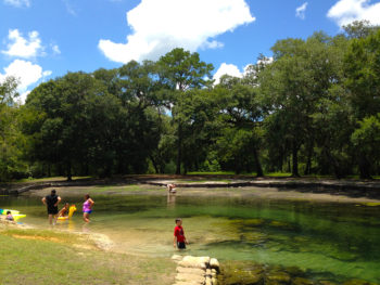Otter Springs