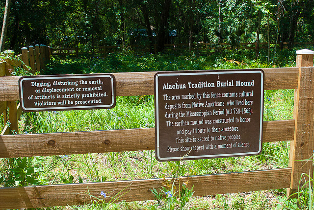 Alachua Tradition Burial Mound