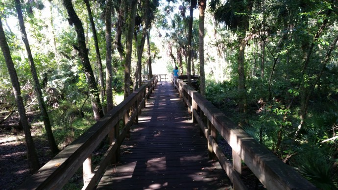 Boardwalk to the river