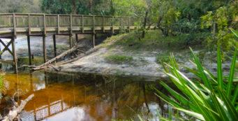 Little-Big Econ bridge