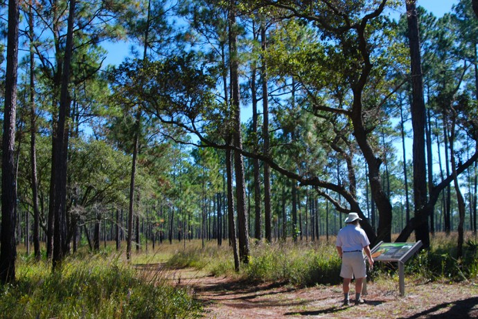Walking the Dees Nature Trail at the Visitor Center