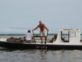 The Masseys working the summer oyster bed