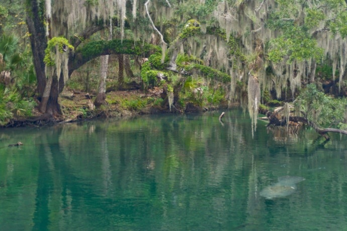 Three Days Of Central Florida Springs Florida Hikes