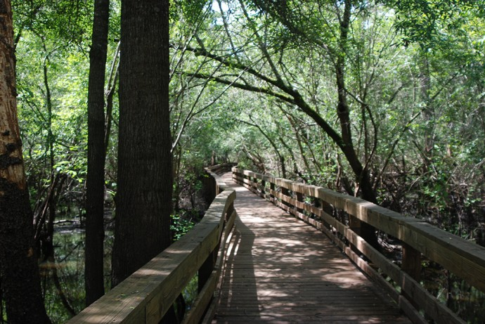 Boardwalk at Hart Springs