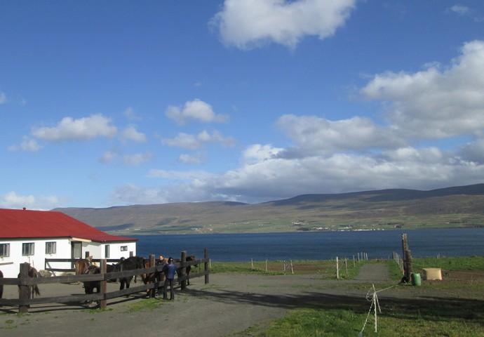 The stables at Skjaldarvík