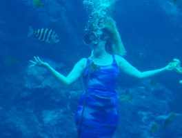 Lunchtime underwater at Weeki Wachee