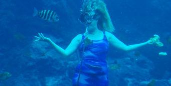 Lunchtime underwater at Weeki Wachee