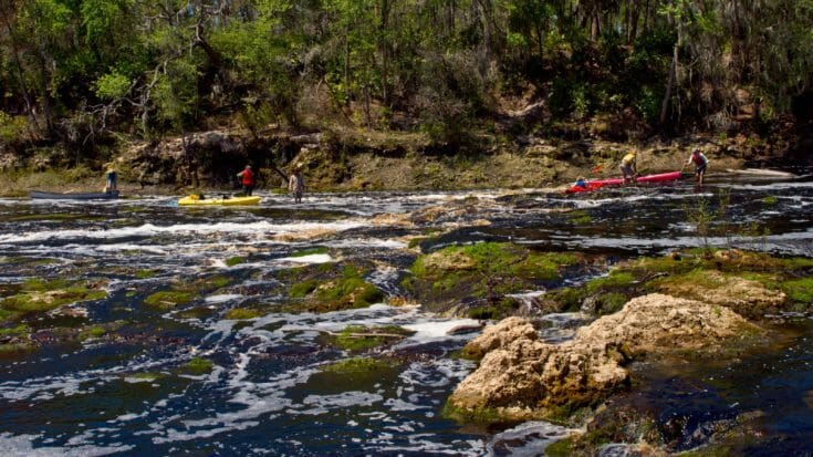 Florida Trail, Bell Springs to Big Shoals