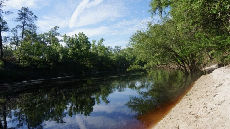 Suwannee River at Bell Springs outflow