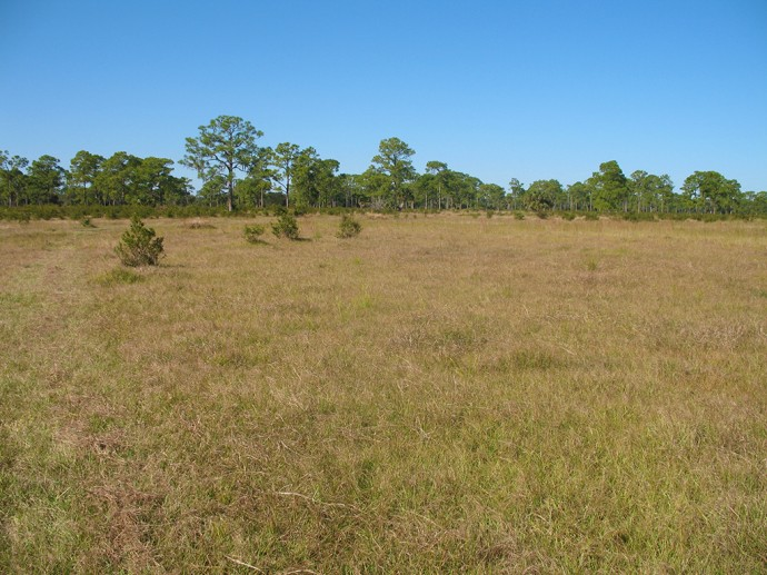 Natural landscape at Yates Marsh is a welcome sight for thru-hikers