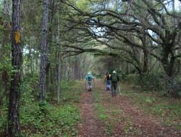 Deep Creek Preserve