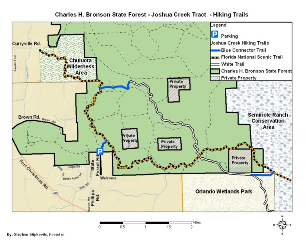 Hiking Bronson State Forest White Trail Connector Loop