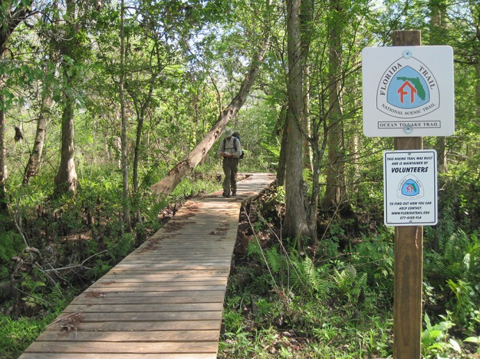 Boardwalk near Cypress Creek