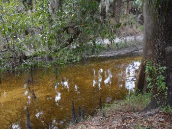 Peace River Trail