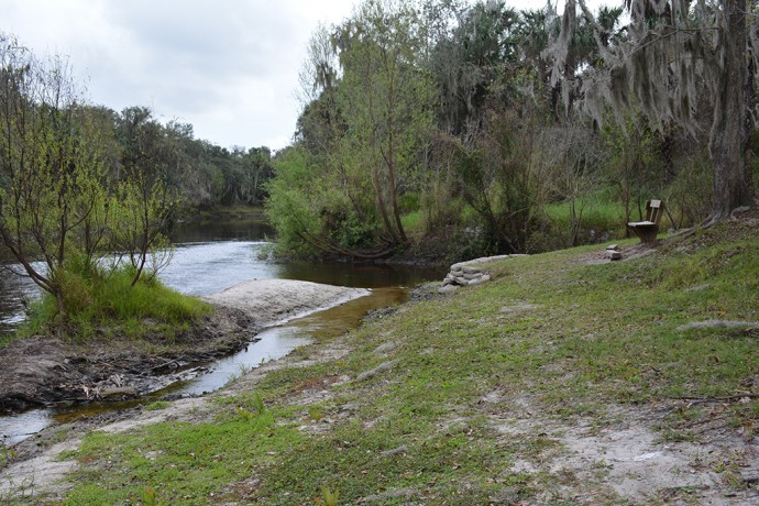 Confluence of Paynes Creek