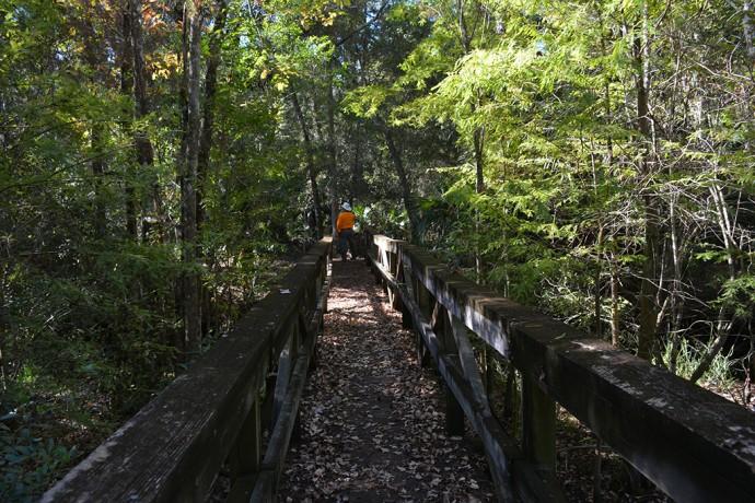 Eaton Creek bridge