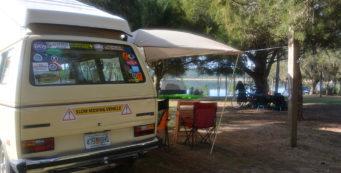 Primrose at Doe Lake