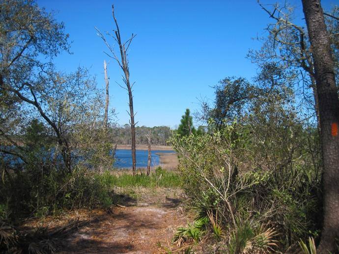 Farles pond