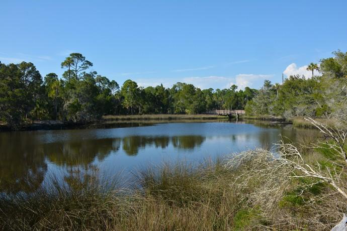 Salt Pond at Withlacoochee Gulf Preserve