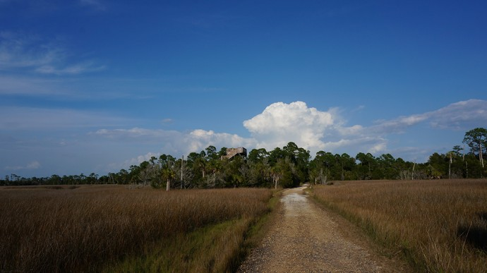 Observation tower at Withlacoochee Gulf Preserve
