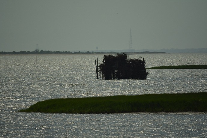 Old oyster watching tower with Wallops Island  rocket launch site beyond