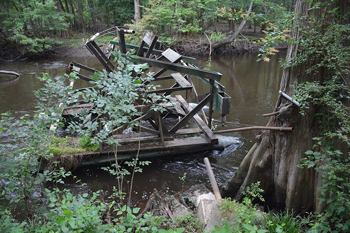 Unusual waterwheel created to water the plants