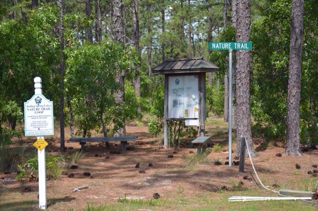 Boiling Springs Lakes Preserve trailhead