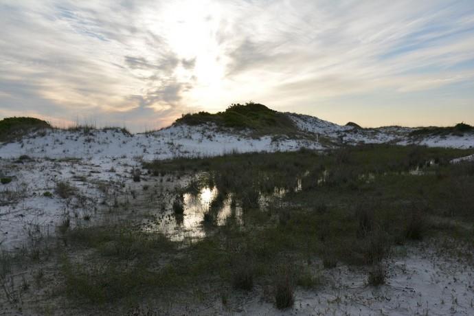 UWF SRIA Dunes Preserve